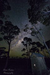Room With a View (Steve Paxton WA) Tags: milkyway trees gumtree stars buildings