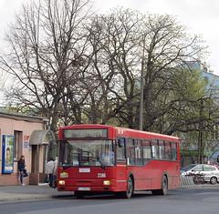 Jelcz M121M, #2186, MPK Lublin (transport131) Tags: bus autobus ztm lublin jelcz m121m mpk