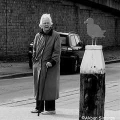 The lady and the Gull (Akbar Simonse) Tags: denhaag thehague holland netherlands nederland woman candid seagull meeuw vrouw streetphotography streetshot straatfotografie straatfoto urban zwartwit bw blancoynegro bn monochrome vierkant square akbarsimonse cane wandelstok car