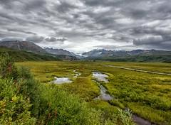 Alaskape (Philip Kuntz) Tags: alaskalandscape glacier glacialecosystem marsh meadow richardsonhighway storm stormy alaska