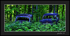 Rust Brothers (the Gallopping Geezer '4.4' million + views....) Tags: vehicle automobile car truck auto rust rusty abandoned decay decayed weathered worn faded neglected derelict rural backroad backroads mi michigan upperpeninsula up roadtrip smalltown canon 5d3 tamron 28300 geezer 2016