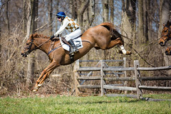 leap (Jen MacNeill) Tags: brandywinehills pointtopoint steeplechase horse race racing thoroughbred equine chestercounty pa pennsylvania jump jumping jockey