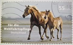 great stamp Germany € 55c+25c horses (午马, ló, cheval, 말, caballo, 馬, cavallo, حصان  Pferd, paard, at, kůň, ло́шадь, cavalo, koń, סוס, άλογο, hest, घोड़ा, اسب , kôň, ცხენი, кон, hestur, konj, hevonen)  timbres Allemagne  우표 독일 유럽 sellos Alemania selos (stampolina, thx for sending stamps! :)) Tags: 午马 ló cheval 말 caballo 馬 cavallo حصان pferd paard kůň ло́шадь cavalo koń סוס άλογο hest घोड़ा اسب kôň ცხენი кон hestur konj hevonen horse allemagne 우표 독일 유럽 sellos alemania selos alemanha γραμματόσημα γερμανία frimerker tyskland markica njemačka pullari almanya スタンプ ドイツの ヨーロッパ postzegels duitsland francobolli stamps briefmarke briefmarken postzegel zegel zegels марки टिकटों แสตมป์ znaczki frimärken 邮票 طوابع bollo francobollo bolli horses pferde tiere animals braun brown