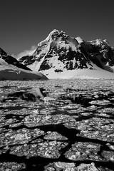 Still Frozen Waters (Danae Sheehan) Tags: blackandwhite monochrome antarctica landscape view cold snow ice rock black white sky scenic still antarctic peninsula mountains ridges water