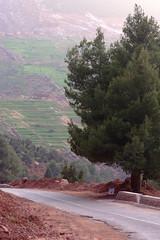 DSCF6453 (domenicomusumeci1) Tags: marocco ourika