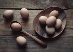 Shades of Brown (lclower19) Tags: eggs takeaim brown spoon plate wood stilllife 52in2017 week15 naturallight