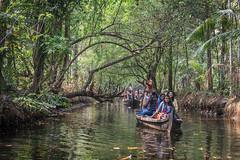 Kerala Backwaters Cruise (luke.me.up) Tags: kerala backwaters tourism india cochi cochin nikon d810 water river channel boats