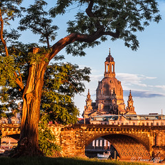 golden evening (funtor) Tags: church germany dresden color evening light city building architecture frauenkirche