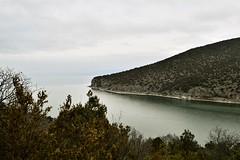 The Edge CSC_2738 (joanna papanikolaou) Tags: prespes lakes lakescape lakescenery lakeshore lake greece macedonia shore trees nature water waterscape outdoors nobody outside scape scene scenic scenery