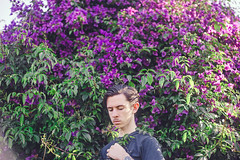104/365 (Chris Gray Photo) Tags: grow nature flowers bush self selfportrait portrait portraiture purple colour people growth leaves green outdoors fineart canon 365project 50mm