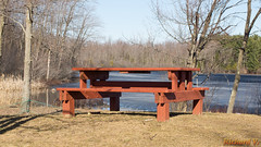 Parc du Lac-Beauchamp, Gatineau - Canada - 2601 (rivai56) Tags: gatineau québec canada parcdulacbeauchamp gatineaucanada sonyphotographong spring printemps