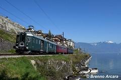 BFe 4/4 1643 SBB Historic, St. Saphorin (Brenno Arcara) Tags: bfe44 sbbhistoric sbbcffffs lavaux wyländerli stsaphorin vaud train vignes léman suisse