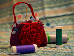 17 (munn1) Tags: sewing pin cushion pincushion quilting thread spool nikon nikor 247028 d4s stilllife canada coquitlam color week17theme week172017 52weeksthe2017edition weekstartingsundayapril232017 britishcolumbia quilt