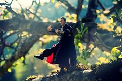 kung fu (freshpädda) Tags: starwarsblackseries starwars rogueone donnieyen kungfu kriegdersterne