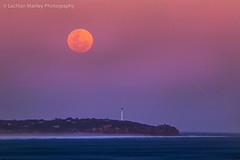 Moonrise Over Airey's Inlet Lighthouse (Lachlan Manley Photography) Tags: lighthouse moon full moonrise great ocean road tourism travel canon