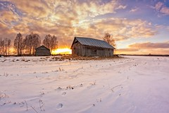 Rabbit Footprints On The Snow (k009034) Tags: 500px trees sky sunset nature sun clouds old building silhouette snow fields countryside agriculture barn rural wooden footprints tracks farming springtime no people finland tranquil scene copy space oulainen matkaniva teamcanon