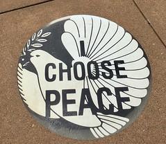 I Choose Peace (patia) Tags: sanfrancisco deyoung museum summeroflove summeroflovesf choose peace dove sixties art