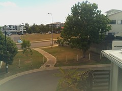 2017-05-01T10:00:04.684045+10:00 (growtreesgrow) Tags: trees timelapse raspberrypi