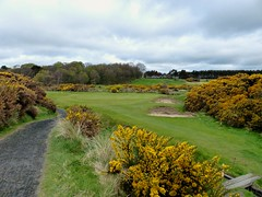 P1010736 - Lundin GC #5 par 3 b r (tewiespix) Tags: club golf scotland fife links lundin