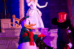 IMG_5751 (onnawufei) Tags: christmas disney disneyworld wdw waltdisneyworld donaldduck magickingdom