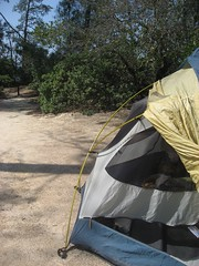 Home Away from Home (smenjas) Tags: camping trees light shadow camp rain forest fly woods day afternoon sunny tent hike dirt greenery shrubbery