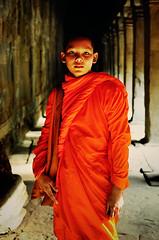 Buddhist monk, Cambodia (Zhenya bakanovaAlex Grabchilev) Tags: portrait people orange men vertical standing temple asia cambodia solitude khmer monk buddhism shavedhead siemreap angkor oneperson angkorwatt orangecolor traditionalclothing traveldestinations onlymen kampuchia oldruin oneyoungmanonly onemanonly builtstructure cambodianculture monkreligiousoccupation cambodianethnicity