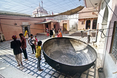 Karni Mata Temple - The Cooking Vessel at the Rat Temple (Anoop Negi) Tags: 2005 new york travel india tourism cooking temple photography photo october rat worship post v