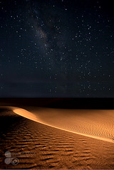 Star in desert @ Night (Azaga ) Tags: camera city travel light color tourism animal night canon star clothing break desert cs2 box abraham boutique dat della creature libya contain   blackandwight   50d sabha   canon50d  colorphotoaward ibrahem   azaga   aezag