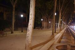 The walk home from Espaisucre (Joey Z1) Tags: barcelona barcelonaasseenbyjoeyz1 bcn barcelonanights urbanbarcelona nightwalkbarcelona nightscenebarcelona barcelonalife eveningwalk tranquilcityscene nightshot parallellines passeigdepicasso walkfromespaisucre quiteevening illuminatedwalk streetlamps