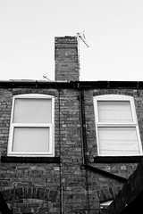 bloxwich terraces (downhamdave) Tags: houses chimney bw white house black west building ariel window monochrome terraces walsall midlands bloxwich
