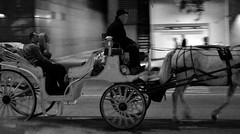 Horseman (Serge Arsenie) Tags: camera bw horse white chicago man black moving nikon carriage rickshaw