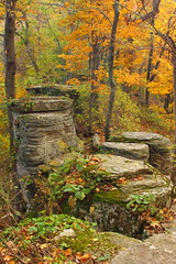 Medal Platform (MarcusDC) Tags: indianfortmountain kentucky fallcolor autumn rocks boulder explored266november62013