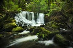 Horseshoe Falls, Tasmania, Australia (Aaron Bishop Photography) Tags: longexposure green water landscape waterfall moss rainforest australia tasmania horseshoefalls mountfieldnationalpark vision:outdoor=0863 vision:plant=0599