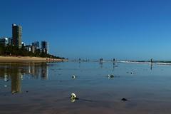 White Rose (pmenge) Tags: praia azul mar pessoas rosa cu osm reflexos 22mm