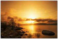 Golden Morning (Jyrki Salmi) Tags: sea beach sunrise golden nikon rocks nikkor jyrki 2880mm kotka d600 salmi katariinanniemi glouds mygearandme mygearandmepremium mygearandmebronze mygearandmesilver mygearandmegold mygearandmeplatinum mygearandmediamond