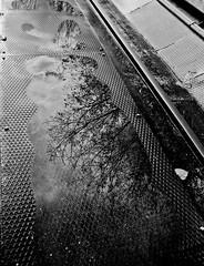 about (ladylali) Tags: urban blackandwhite bw abandoned architecture train factory urbana architettura biancoenero treni fabbrica abbandonata