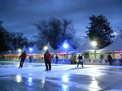 Hyde Park London (EolianButterfly) Tags: park november winter england london fair hyde wonderland 2009