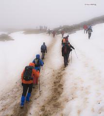 Subida a Gorbea (Jabi Artaraz) Tags: sony zb gorbea gorbeia euskoflickr 31dediciembre jartaraz alfa350 montañismovasco