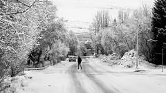 Winter in Akureyri (Th o r g n y r D) Tags: winter bw snow iceland north artic akureyri eyjafjörður norðurland northiceland