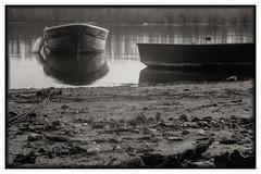 kokytos (Problemkind) Tags: blackandwhite bw lake water river deutschland boot see boat blackwhite wasser pinhole schwarzweiss fluss rhine germ rhein altrhein otterstadt