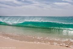 IMG_2682 (K_D_B 2.6 Million views. Thanks) Tags: ocean beach canon sand waves atlantic caboverde 30d boavista capeverde kdb sigma1770f28dcosmacro riutouareg