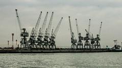 Maqal Port, Basra, Iraq