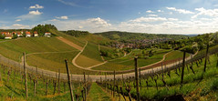 Uhlbach surrounded by Vineyards (Batikart) Tags: road blue trees houses roof sky urban panorama plants sun mountains green nature grass lines sunshine clouds rural canon buildings germany way landscape geotagged deutschland spring flora europa europe pattern stitch stu