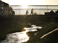 Chasing a dream (crowfoto) Tags: sun sunset sonnenuntergang licht light gold golden tübingen tuebingen sonne beautiful