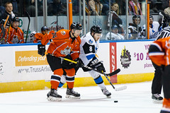 "Missouri Mavericks vs. Wichita Thunder, February 7, 2017, Silverstein Eye Centers Arena, Independence, Missouri.  Photo: John Howe / Howe Creative Photography • <a style=""font-size:0.8em;"" href=""http://www.flickr.com/photos/134016632@N02/32679772391/"" target=""_blank"">View on Flickr</a>"