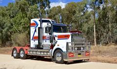 Jolly (quarterdeck888) Tags: trucks transport semi class8 overtheroad lorry heavyhaulage cartage haulage bigrig jerilderietrucks jerilderietruckphotos nikon d7100 frosty flickr quarterdeck quarterdeckphotos roadtransport highwaytrucks australiantransport australiantrucks aussietrucks heavyvehicle express expressfreight logistics freightmanagement outbacktrucks truckies truckshow australiantruckshows 2017truckshows oaklands oaklandstruckshow oaklandstruckshow2017 workingshowtrucks workingtrucks bobtail primemover kenworth t904 jolly erroljolly