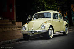 Volkswagen Escarabajo (martinmeg) Tags: d3200 nikon volkswagen escarabajo beetle argentina córdoba