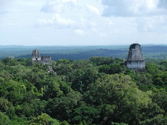 Tikal, Guatemala (rylojr1977) Tags: jungle rainforest tikal mayans ruins guatemala centralamerica ancient city tourism rebelbase starwars yavin movielocation temple