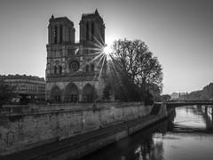 Sun peaking through at Notre Dame (Ludo_Jacobs) Tags: paris france notredame sun monochrome blackandwhite seine