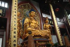 Estatua de Buda - Hangzhou (Gabriel Bermejo Muñoz) Tags: china asia hangzhou templo temple asian chinese chino budista buddhist religions religiones travel buda buddha buddhism budismo gabrielbermejomuñoz yangse templodelalmaescondida alma escondida templodelespirituoculto fieles rezos orar ceremonia religiosa lingyintemple lingyin buddhisttemple templobudista templeofthesoulsretreat souls retreat wulinmountains feilaifeng picofeilai thepeakthatflewhither religious religioso lacolinavoladora guardian dorado golden oro gold estatua statue